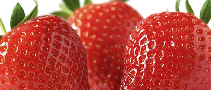 Frutillas 1